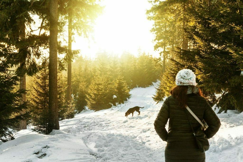 Ilustračný - prechádzka v zime