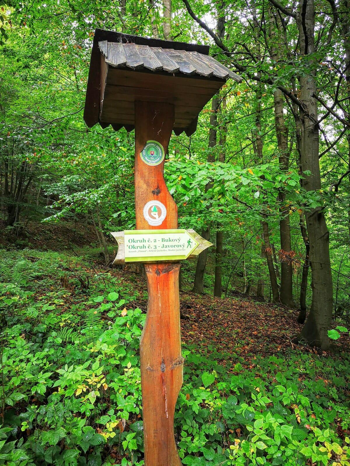 Smerová tabuľa na lesníckom náučnom chodníku Čierna mláka