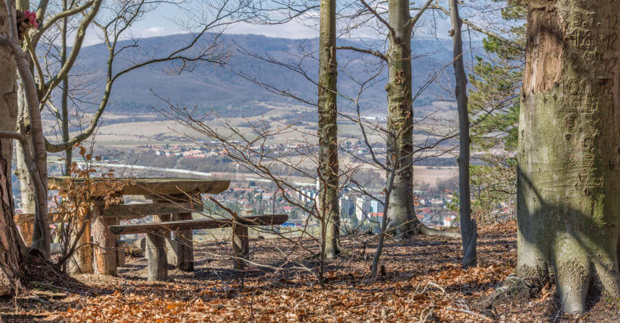 Vyhliadka na turistickom okruhu Bralce