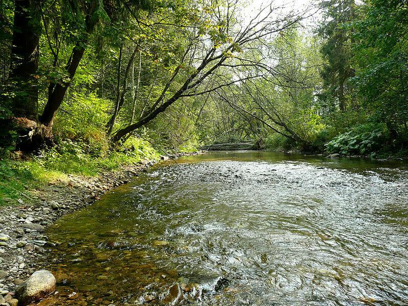Rieka Hron časť Pohorelá