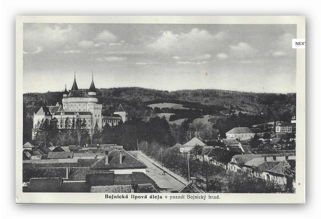 Bojnická lipová alej na historickej fotografii s Bojnickým zámkom v pozadí