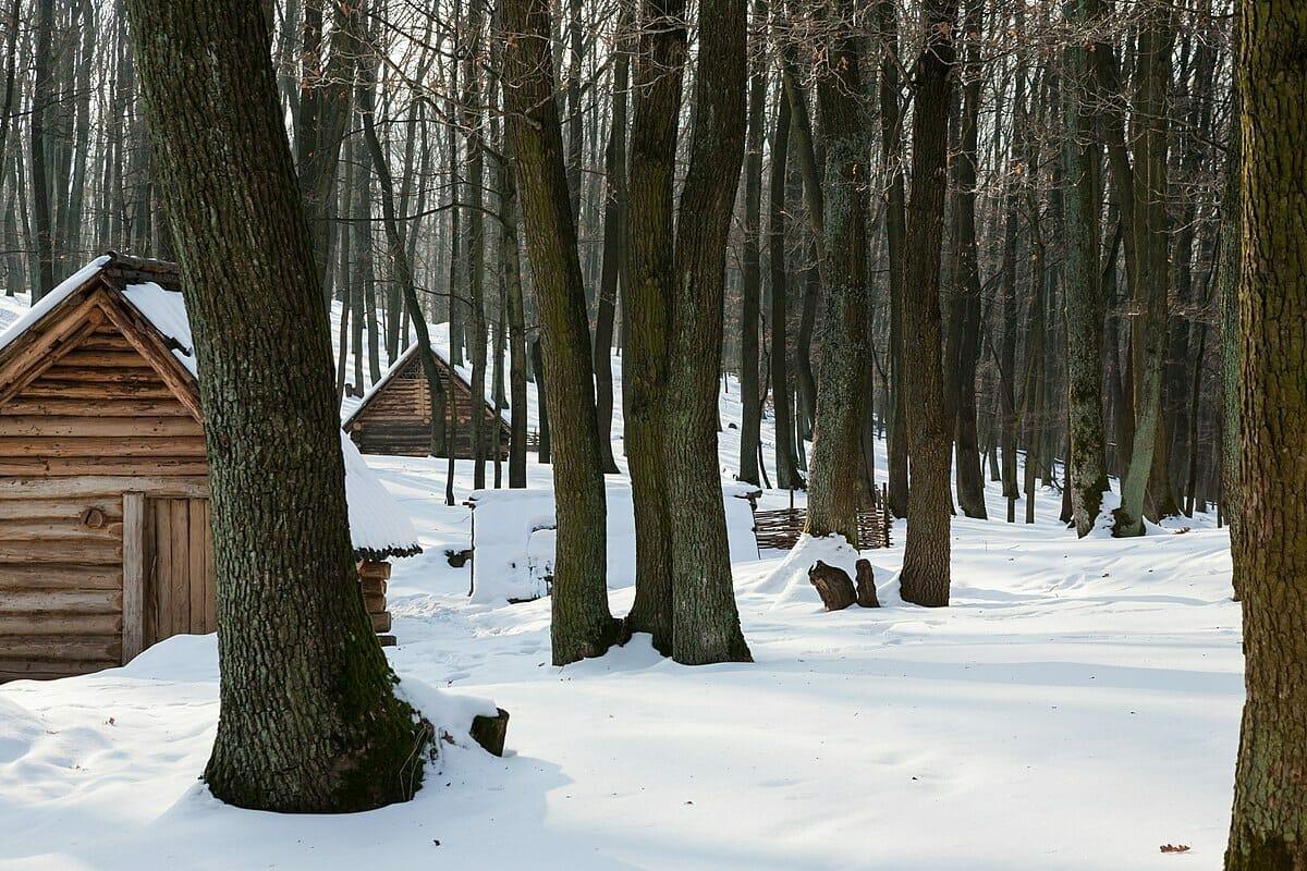 Slovanské obydlia – nadzemné domy